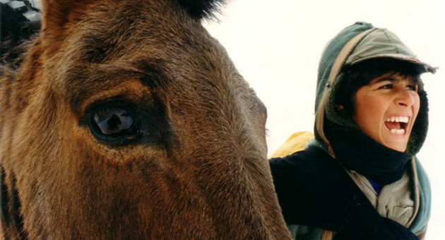 En tid for fulle hester