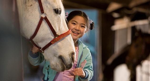 Hest er best 2