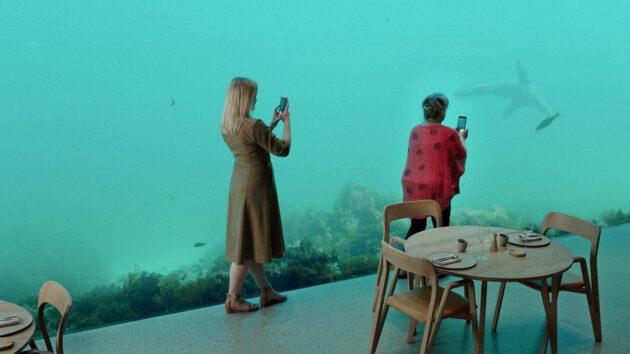 Wonders beneath the Sea 1 1536x864